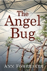 Angel Bug 240x160